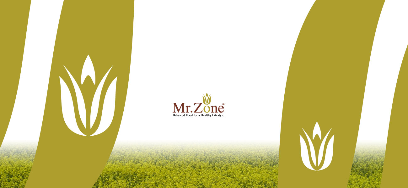 mr zone logo